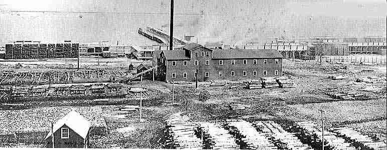 Cook, Curtis and Miller Sawmill, 1906