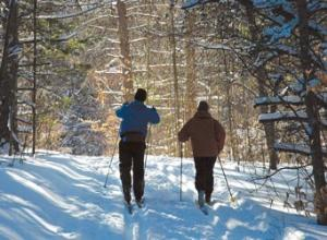cross country skiing and snowshoeing